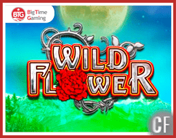 Machine à sous Wild Flower sur les casinos Big Time Gaming